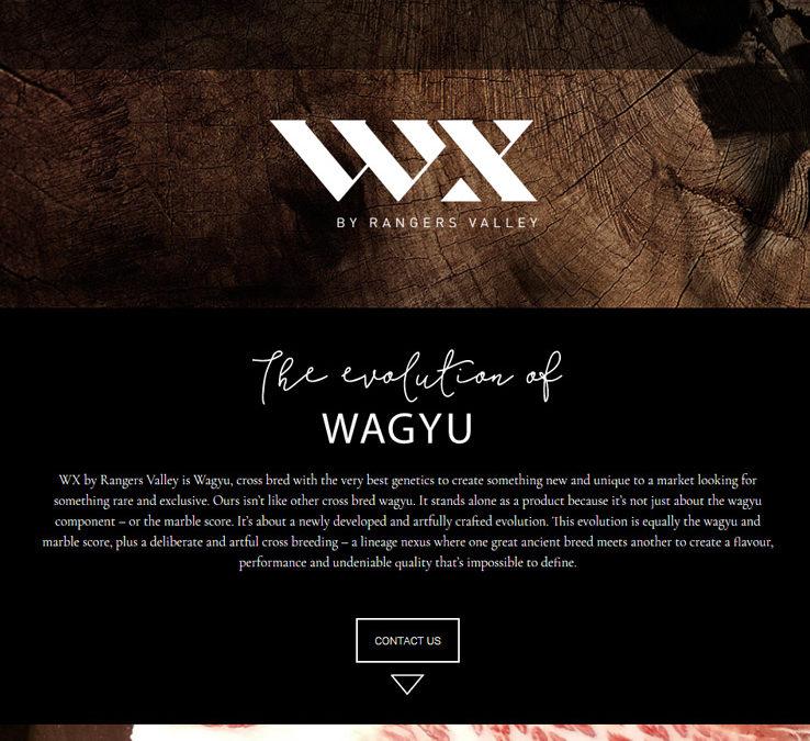 WX by Rangers Valley - LloydWeb Portfolio Therese Lloyd
